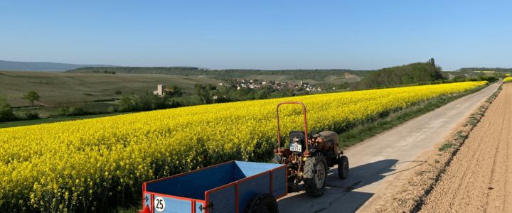 2020 KS30 + Anhaenger im GULF Oil Style